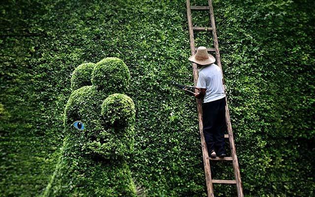 2015中国(金华)园林绿化行业发展高峰论坛