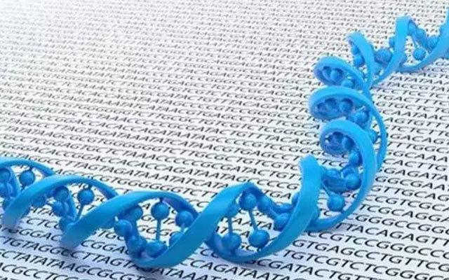 第三届基因导向个体化用药研讨会