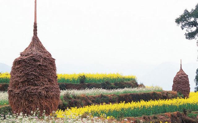 全国乡土景观培育与保护系列研讨会(杭州站)