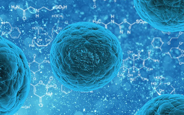 2015年解放军总医院细胞形态学检验学习班