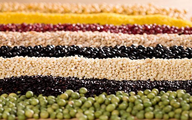 中国种子协会蔬菜种子分会2015年年会