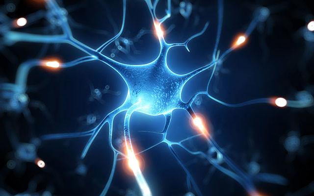 神经病理性疼痛治疗研讨会