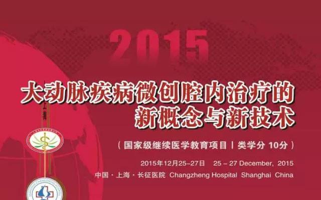 2015大动脉疾病微创腔内治疗的新概念与新技术会议