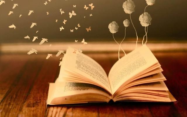 大语文教育新风口IBN教育模式高峰论坛