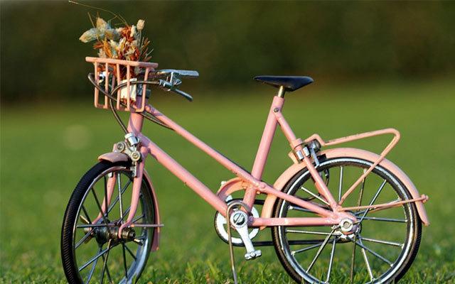 温州市自行车发展协会2015年会
