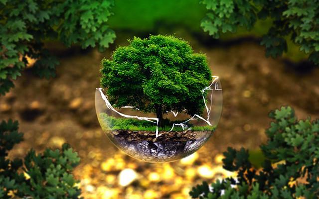 2015中华环保民间组织可持续发展年会