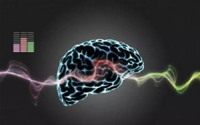 神经内科新进展学术研讨会