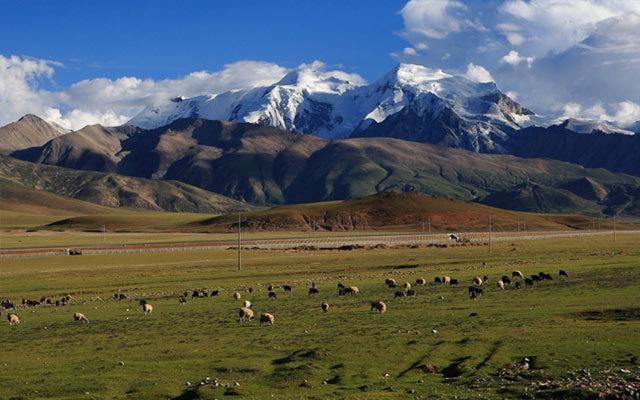 2016年中国青藏高原地质年会