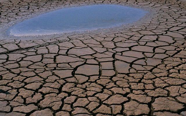 """""""苏州市土壤污染风险防控体系建设""""研讨会"""