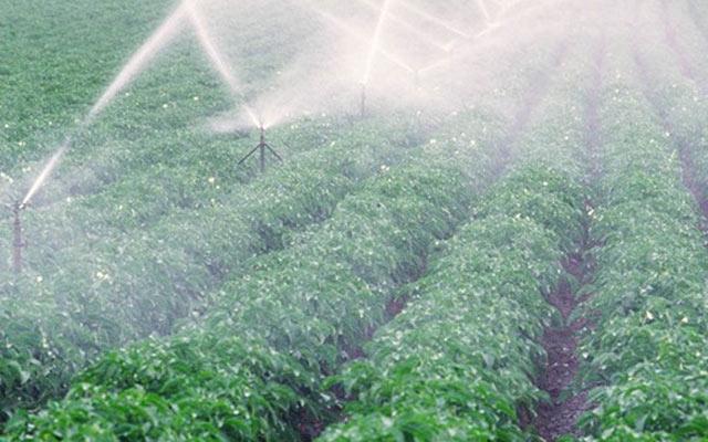 第二届全国节水灌溉装备与技术战略研讨会