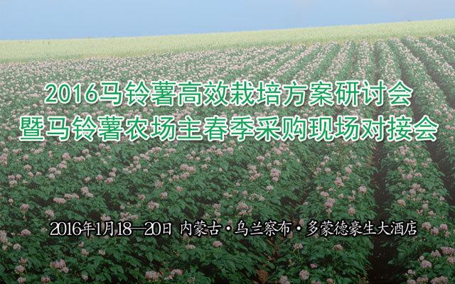 2016马铃薯高效栽培方案研讨会暨马铃薯农场主春季采购现场对接会