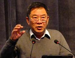 中国投资有限责任公司副总经理谢平照片