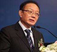 商务部原副部长魏建国照片