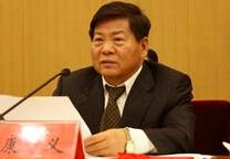中国有色金属学会理事长康义