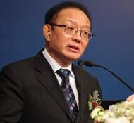 中国国际经济交流中心秘书长魏建国照片