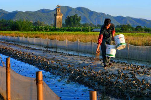2016全球水产养殖论坛