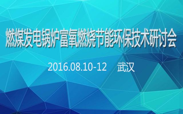 燃煤发电锅炉富氧燃烧节能环保技术研讨会