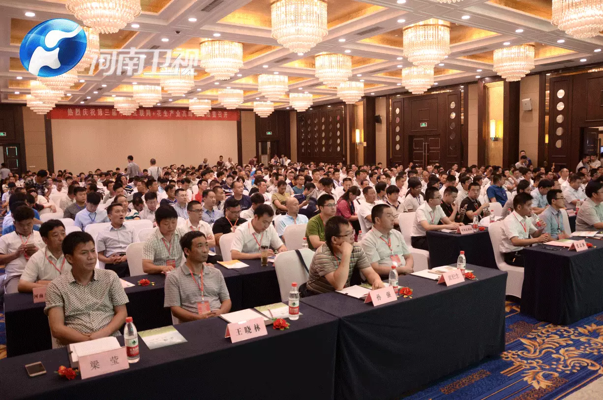 2016第三届中国互联网+花生产业高峰论坛