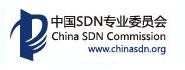 中国SDN专业委员会