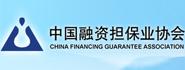 中国融资担保业协会