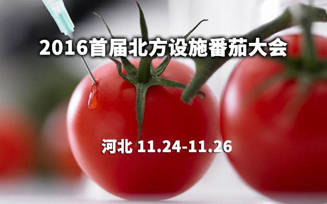 2016首届北方设施番茄大会
