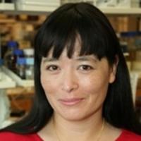 芬兰国家分子研究所首席研究员Caroline Heckman PhD照片