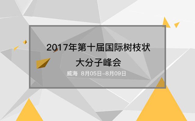 2017年第十届国际树枝状大分子峰会