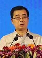 中央网信办信息化发展局副局长张望照片