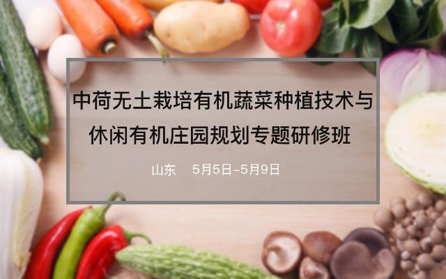 中荷无土栽培有机蔬菜种植技术与休闲有机庄园规划专题研修班