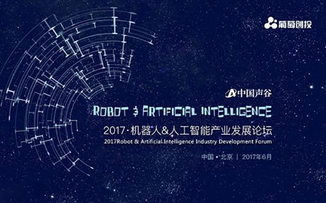 2017机器人&人工智能产业发展论坛