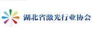 湖北省暨武汉激光学会