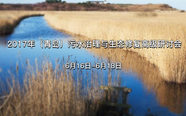 2017年(青岛)污水治理与生态修复高级研讨会