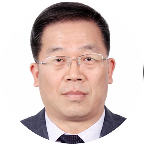 国家电力调度控制中心主任陈国平照片