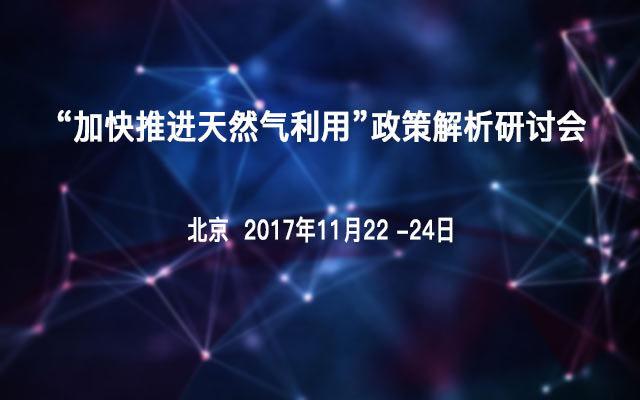 """""""加快推进天然气利用""""政策解析研讨会"""