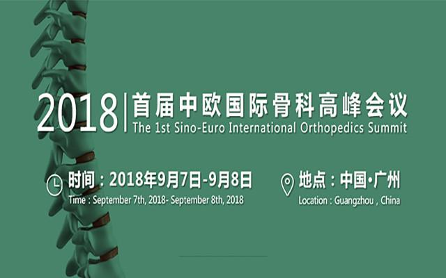 2018首届中欧国际骨科高峰会议