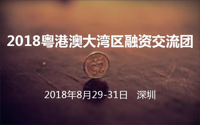 2018粤港澳大湾区融资交流团