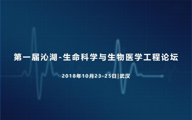 2018年第一届沁湖-生命科学与生物医学工程论坛