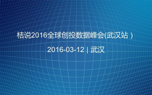 桔说2016全球创投数据峰会(武汉站)