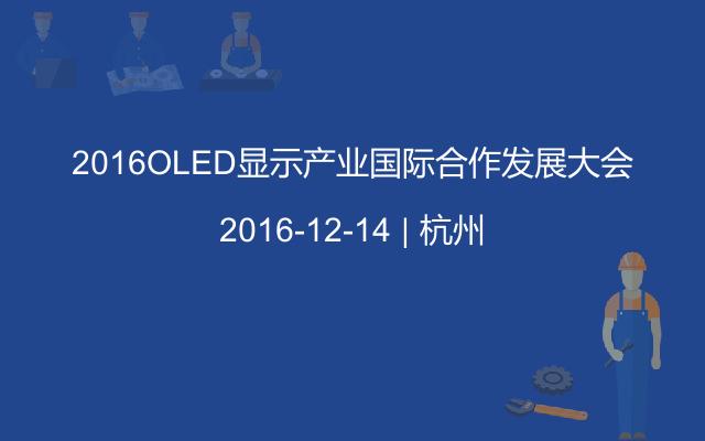 2016OLED显示产业国际合作发展大会