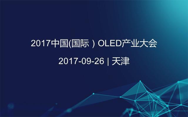 2017中国(国际)OLED产业大会