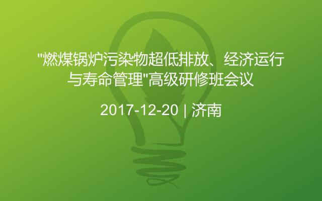 """""""燃煤锅炉污染物超低排放、经济运行与寿命管理""""高级研修班会议"""