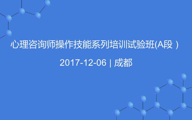 心理咨询师操作技能系列培训试验班(A段)
