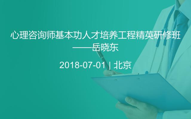 心理咨询师基本功人才培养工程精英研修班——岳晓东
