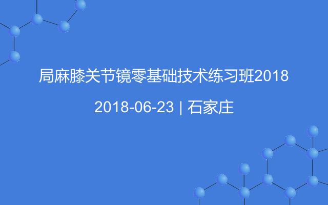 局麻膝关节镜零基础技术练习班2018