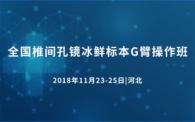 2018全国椎间孔镜冰鲜标本G臂操作班
