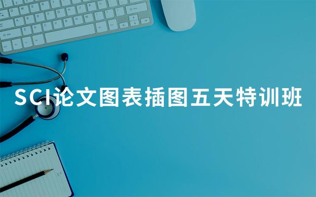 2019 SCI論文圖表插圖五天特訓班(1月北京班)