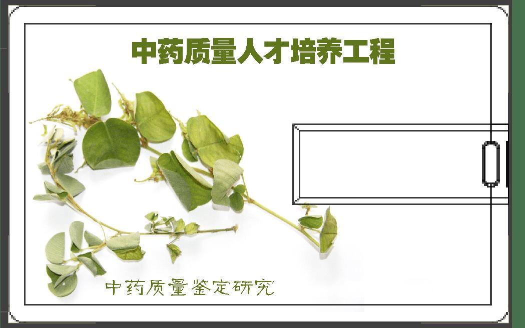 第十七屆全國中藥材飲片質量控制暨野外藥用植物辨識培訓大會2019(衡陽)