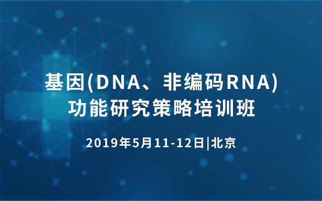 基因(DNA、非编码RNA)功能研究策略培训班2019(5月北京班)