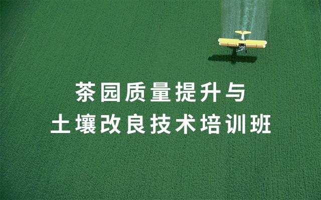2019茶园质量提高与土壤改进技术训练班(7月日照班)