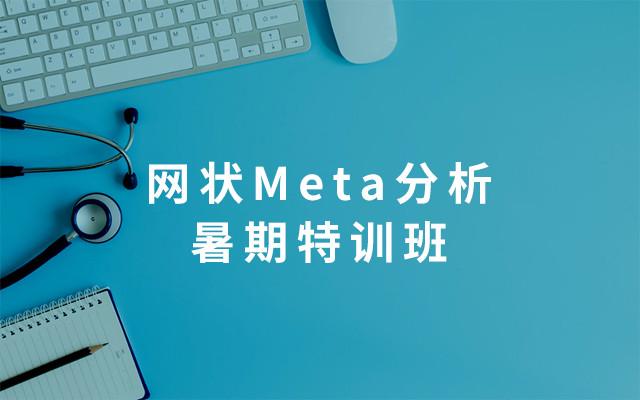 2019网状Meta分析暑期特训班-郑州站